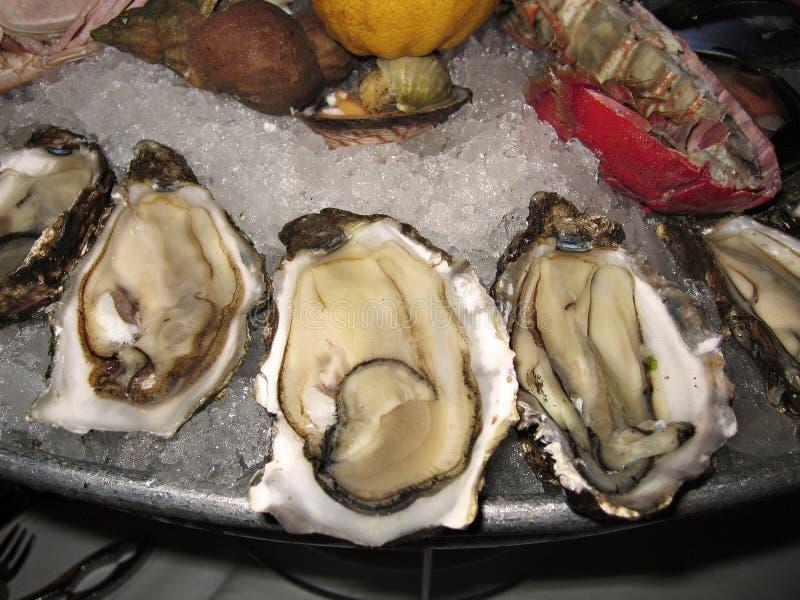 Disco de ostras y de crustáceos en el hielo imagenes de archivo