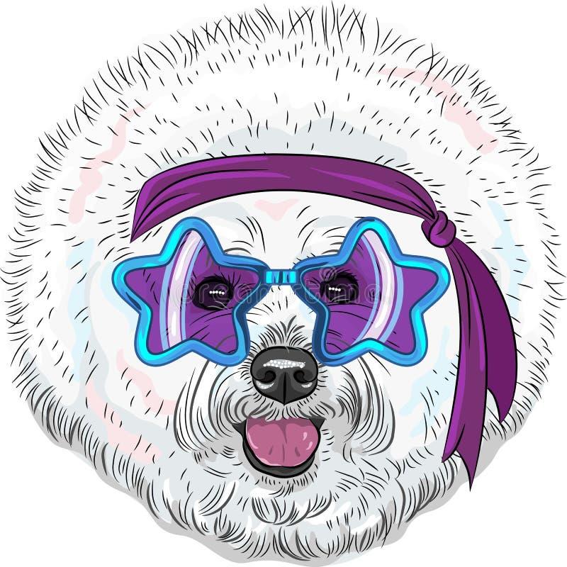 Disco drôle d'étoile de Bichon de chien de hippie de bande dessinée de vecteur illustration libre de droits