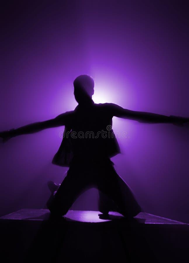 Free Disco Guy Stock Image - 474791