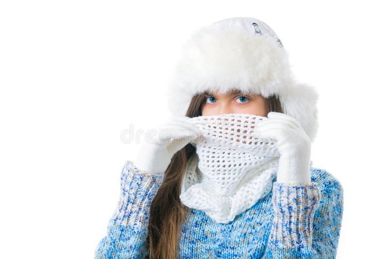 Discontos do inverno Lugar para o texto imagem de stock