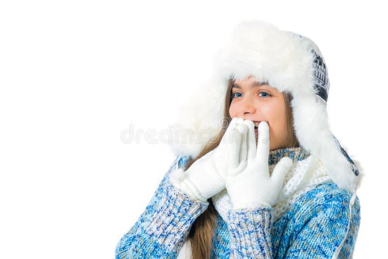 Discontos do inverno Lugar para o texto fotografia de stock royalty free