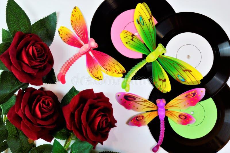 Discos de vinilo, rosa, libélula Un expediente de gramófono, un medio audio del vintage Rose la reina de flores La libélula es un foto de archivo libre de regalías