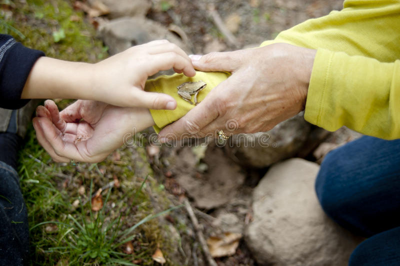 Discovering nature with kids royalty free stock photos