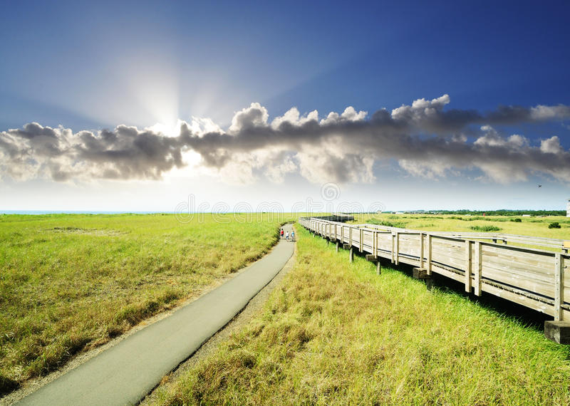 Download Discovery Trail Along The Coastline Of Long Beach Stock Photo - Image: 23473840