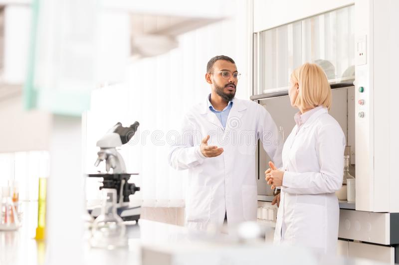 Discussing scientific project in laboratory. Serious experienced medical researchers in lab coats discussing scientific project in laboratory, Arabian men royalty free stock photography