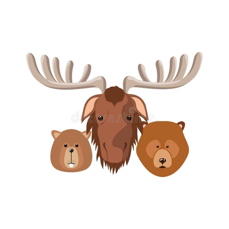 Diseño animal aislado del castor y del oso de los alces ilustración del vector