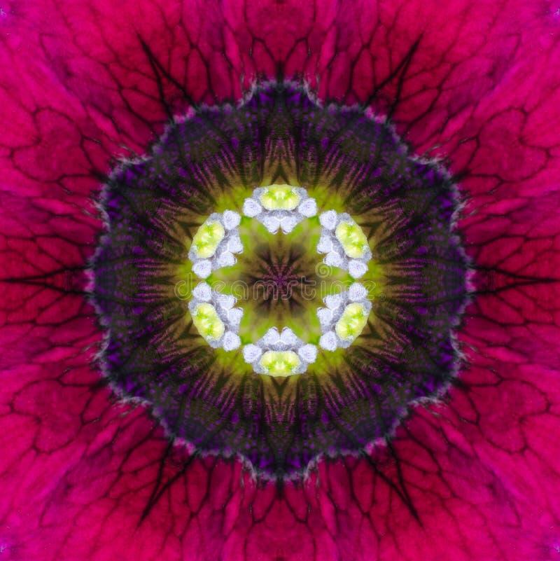 Diseño concéntrico púrpura de Mandala Kaleidoscopic del centro de la flor fotografía de archivo libre de regalías