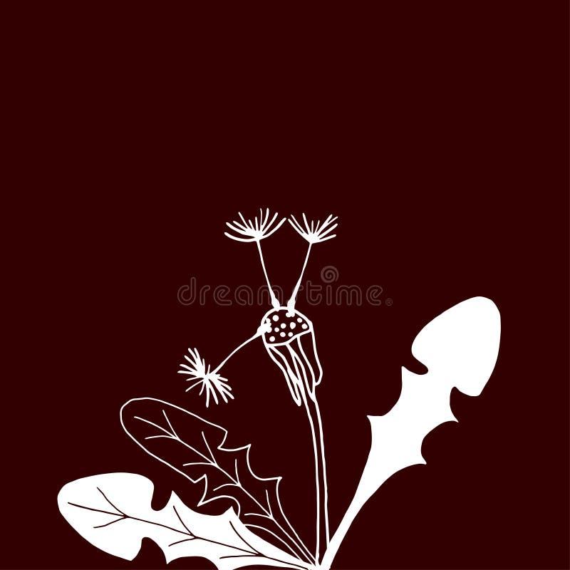 Diseño de flores exhaustas del diente de león de la mano en fondo oscuro Ilustración del vector stock de ilustración