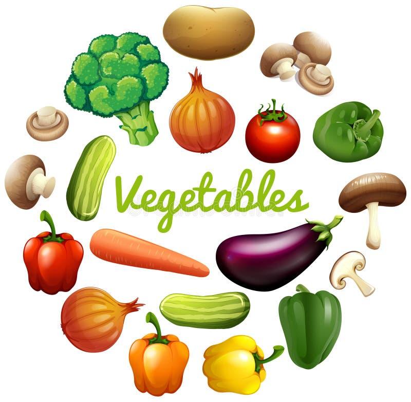 Diseño de la bandera con las verduras frescas libre illustration