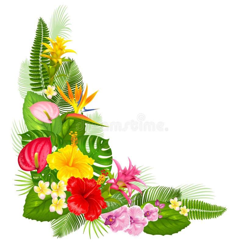 Diseño de la esquina tropical stock de ilustración