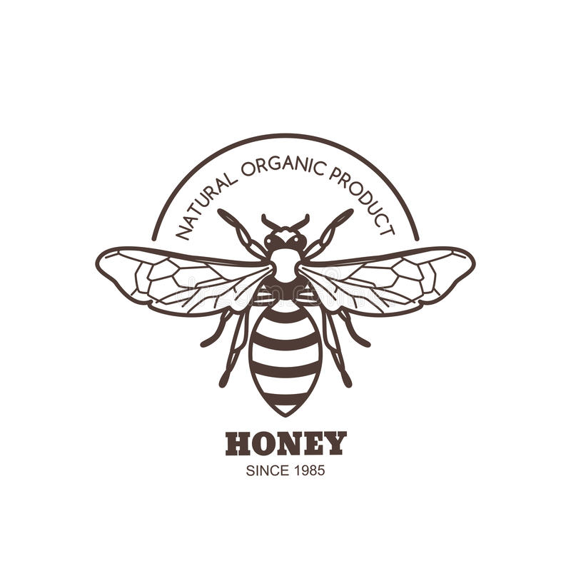 Diseño de la etiqueta de la miel del vintage del vector Logotipo o emblema de la abeja del esquema Abeja linear en el fondo blanc stock de ilustración