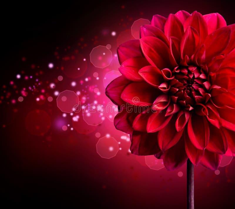Diseño de la flor de la dalia stock de ilustración