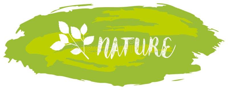 Diseño de la fuente para la naturaleza de la palabra en verde libre illustration