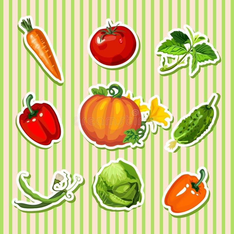 Diseño de muestra de cartel con las verduras maduras lindas Bosquejo del cartel con el contexto rayado de la textura, bandera, ca stock de ilustración