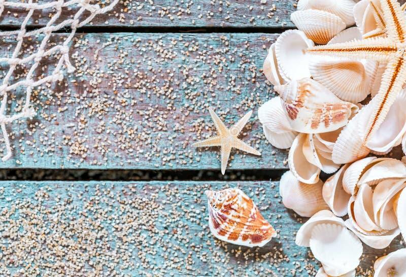 Diseño de tarjeta bastante náutico con las conchas marinas fotografía de archivo