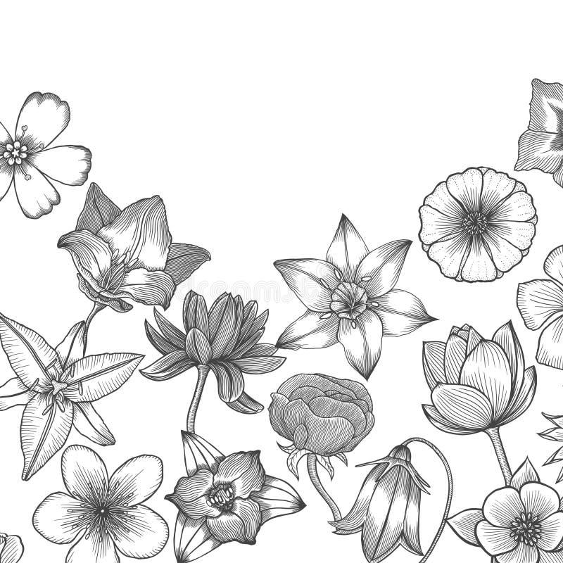 Diseño de tarjeta floral libre illustration