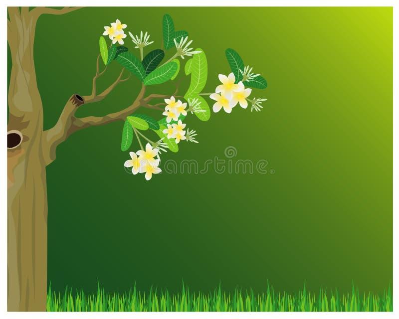 Diseño del árbol del Plumeria ilustración del vector