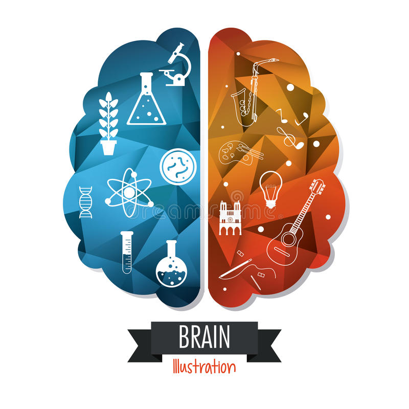 Diseño del cerebro Concepto de la mente Fondo blanco, vector editable libre illustration