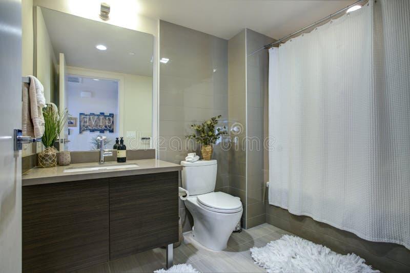 Diseño del cuarto de baño de la propiedad horizontal con el solo gabinete de la vanidad fotos de archivo