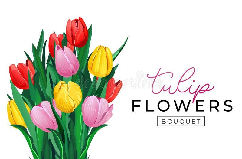 Diseño del fondo del ramo de la flor del tulipán Fondo floral de la primavera con los tulipanes rojos, amarillos y rosados concep libre illustration