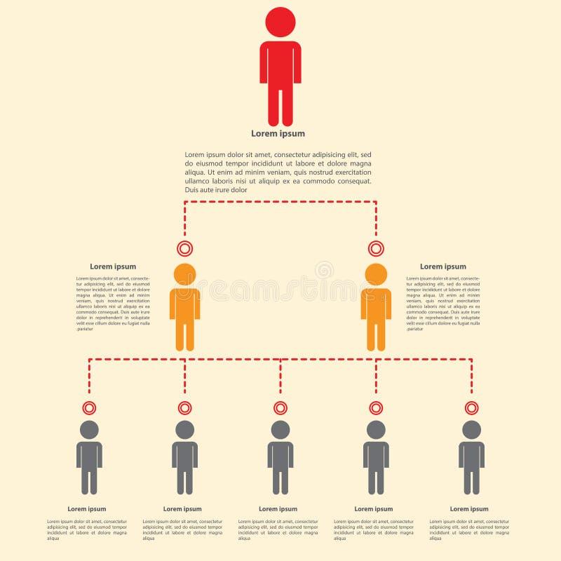 Diseño del infographics de la carta de organización ilustración del vector