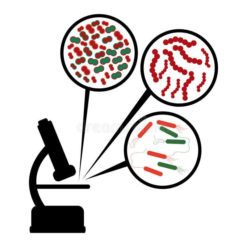 Diseño del laboratorio ilustración del vector