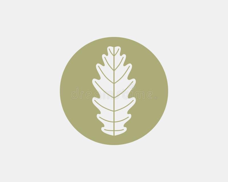 Diseño del logotipo de la hoja del roble ilustración del vector