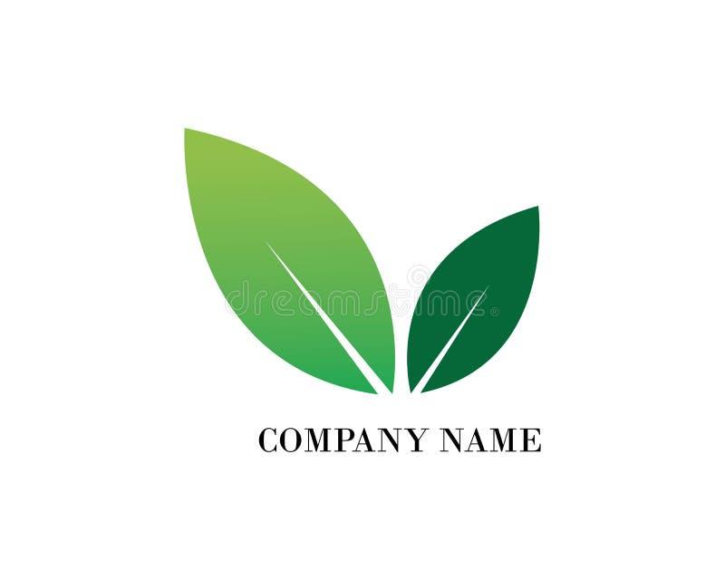 Diseño del logotipo del vector de la hoja del árbol, respetuoso del medio ambiente ilustración del vector