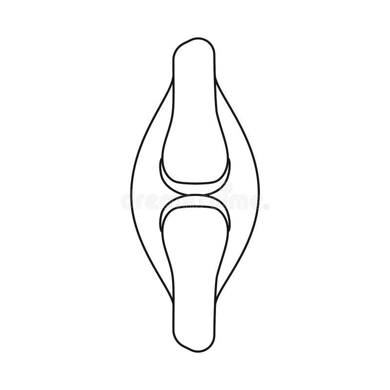 Diseño del vector de icono de la anatomía y del órgano Colección de anatomía y de símbolo común médico para la web stock de ilustración