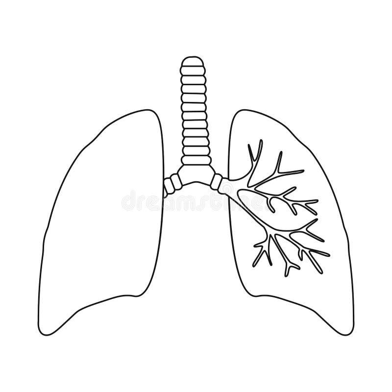 Diseño del vector de logotipo de la anatomía y del órgano Fije de la anatomía y del símbolo común médico para la web libre illustration