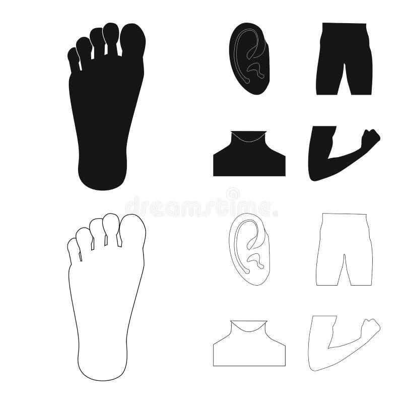 Diseño del vector de muestra del ser humano y de la parte Colección de icono del vector del ser humano y de la mujer para la acci ilustración del vector