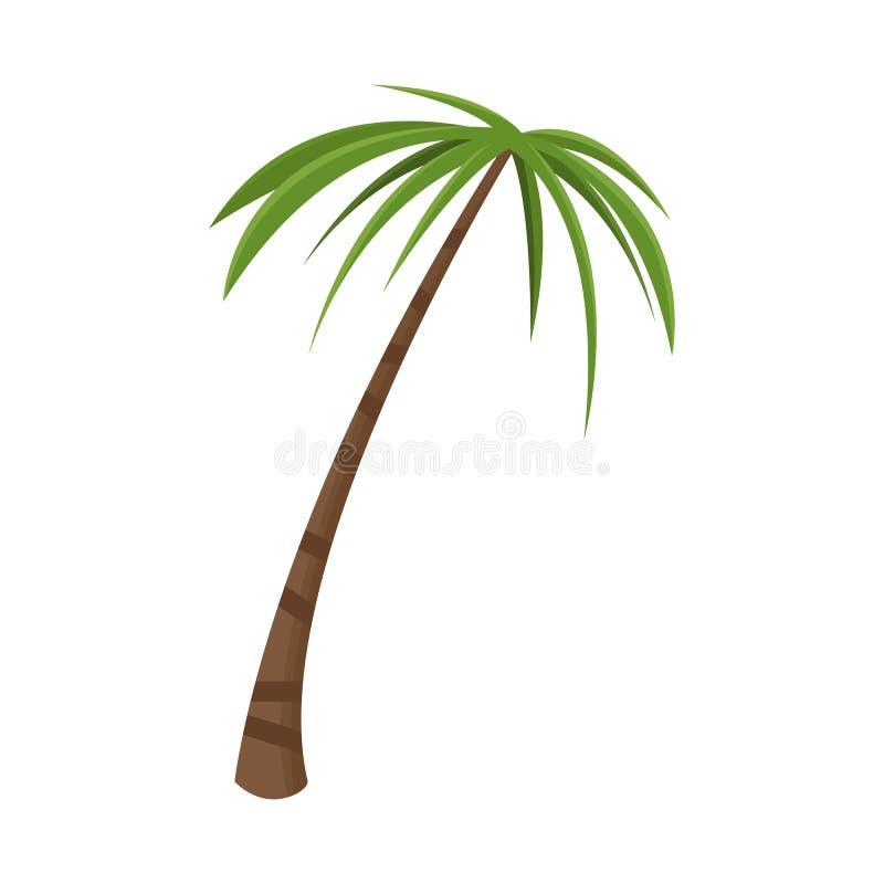 Diseño del vector de palma y de icono alto Colección de símbolo común de la palma y de los Cocos para la web stock de ilustración