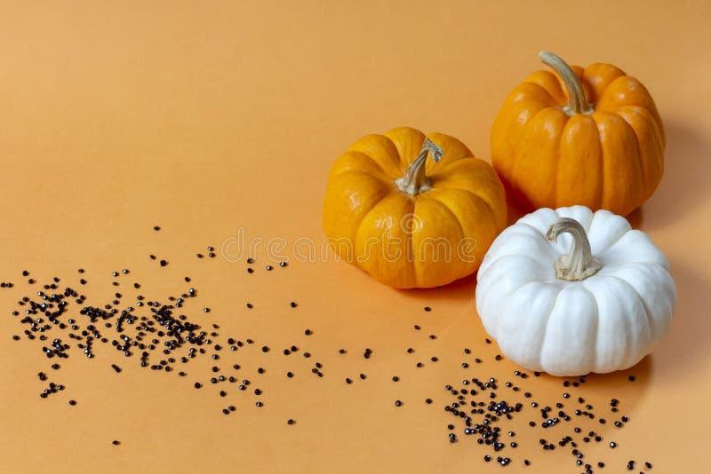 Diseño determinado de la calabaza de lujo de Halloween con los pequeños diamantes negros encendido fotos de archivo