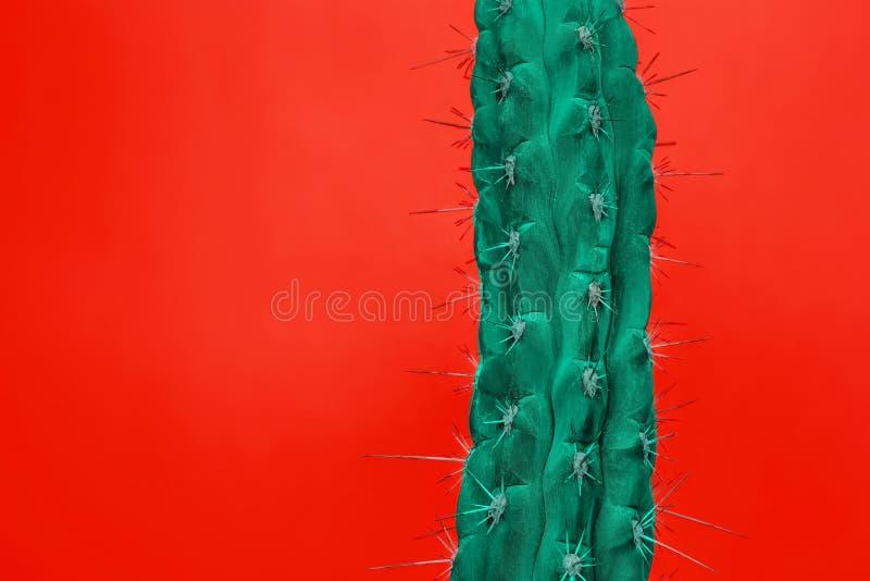 Diseño determinado de la moda del cactus Stillife mínimo Colores brillantes de moda imagenes de archivo