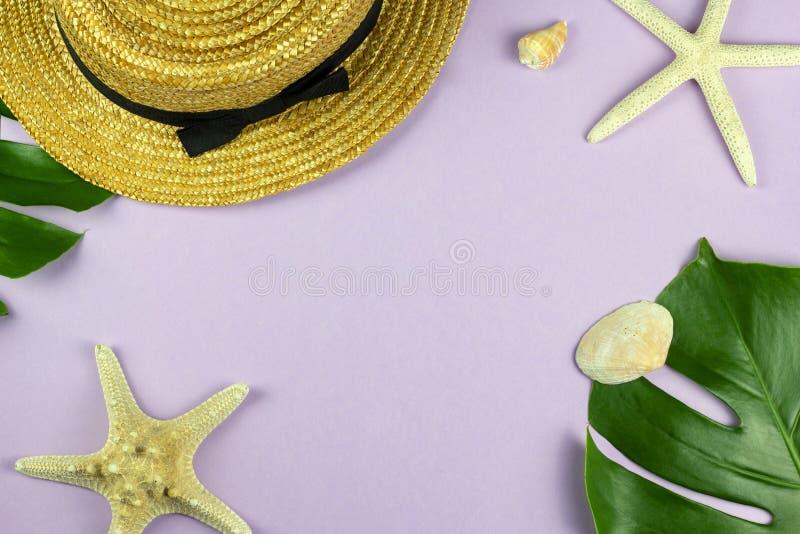 Diseño determinado de las vacaciones tropicales de la playa con el fondo del rosa en colores pastel fotos de archivo libres de regalías