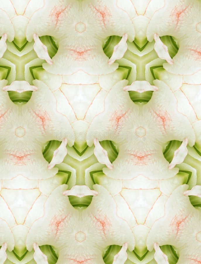 Diseño floral abstracto para el fondo libre illustration