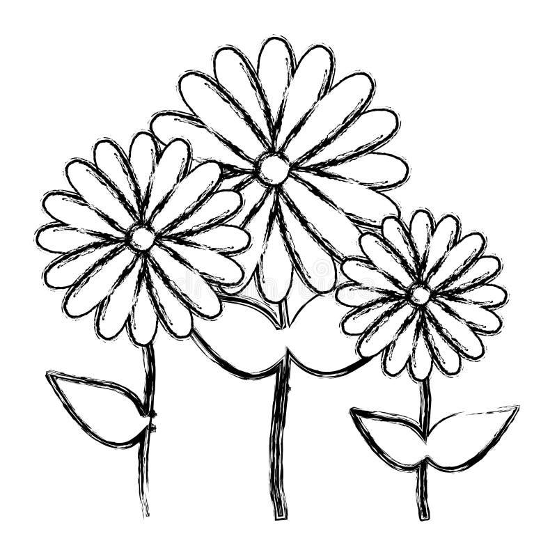 diseño floral borroso del icono de los girasoles determinados de la colección de la silueta ilustración del vector