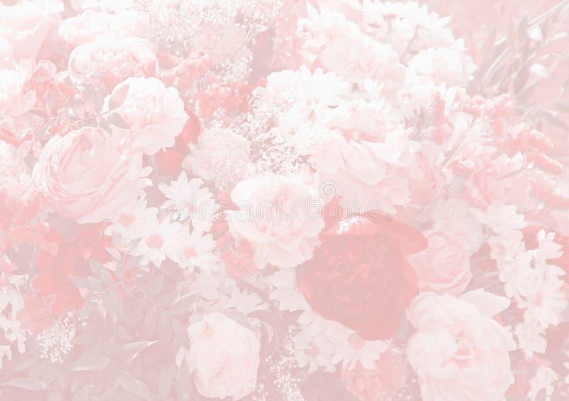 Diseño floral del fondo con el paeony y las margaritas fotos de archivo libres de regalías