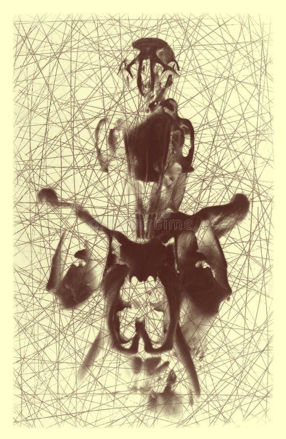 Diseño gráfico de equilibrio del ejemplo de tres cráneos ilustración del vector