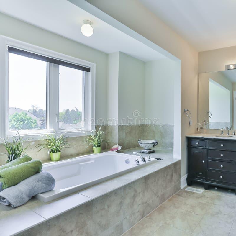 Diseño Interior Del Cuarto De Baño Imagen de archivo - Imagen de ...