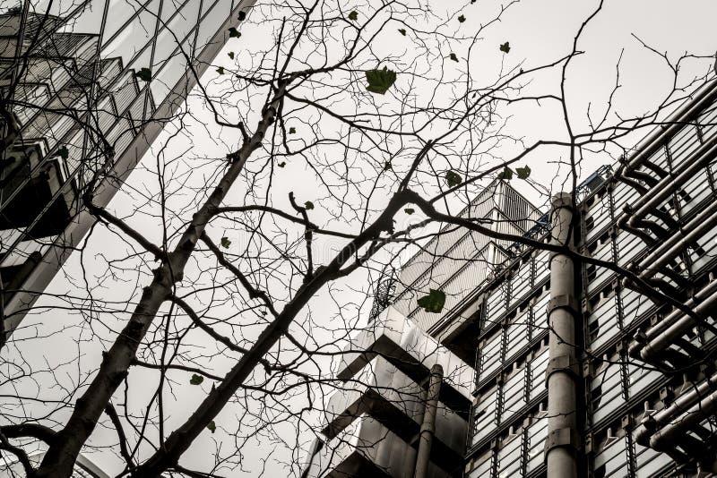 Diseño moderno abstracto del modelo de la silueta del edificio y del árbol imagenes de archivo
