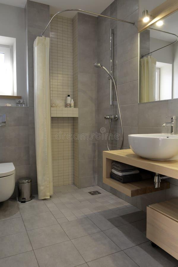 Diseño Neutral Moderno Del Cuarto De Baño Ducha, Lavabo, Espejo ...