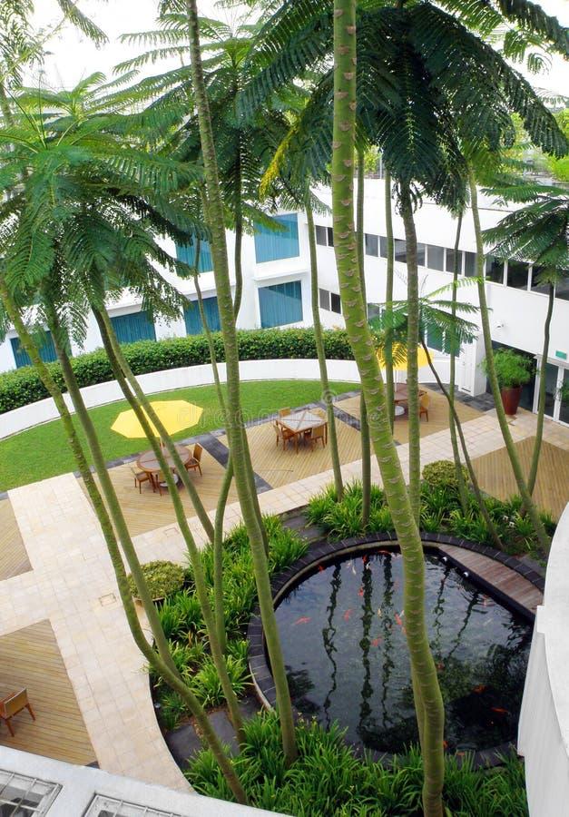 Diseño superior del jardín de la azotea