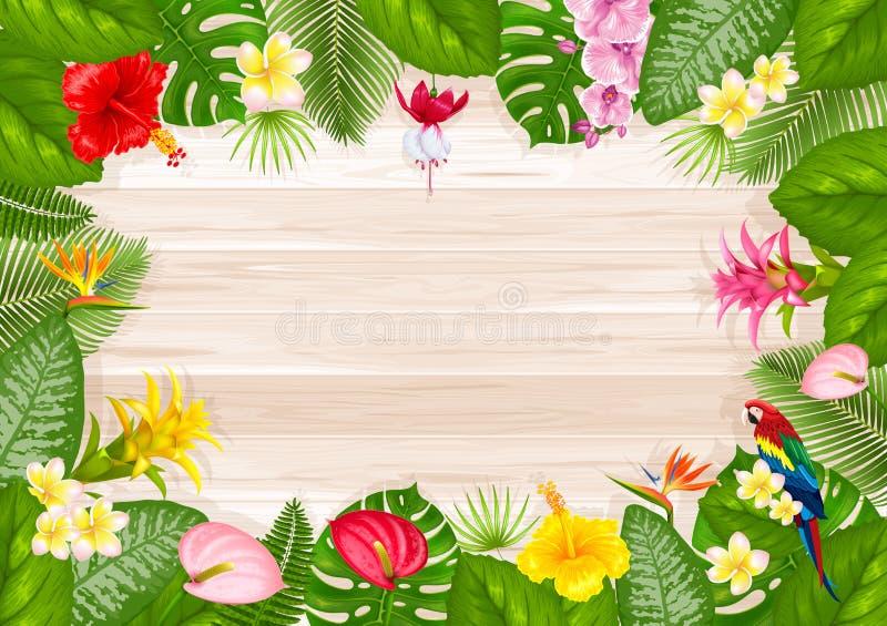 Diseño Tropical Del Marco Del Verano Ilustración del Vector ...