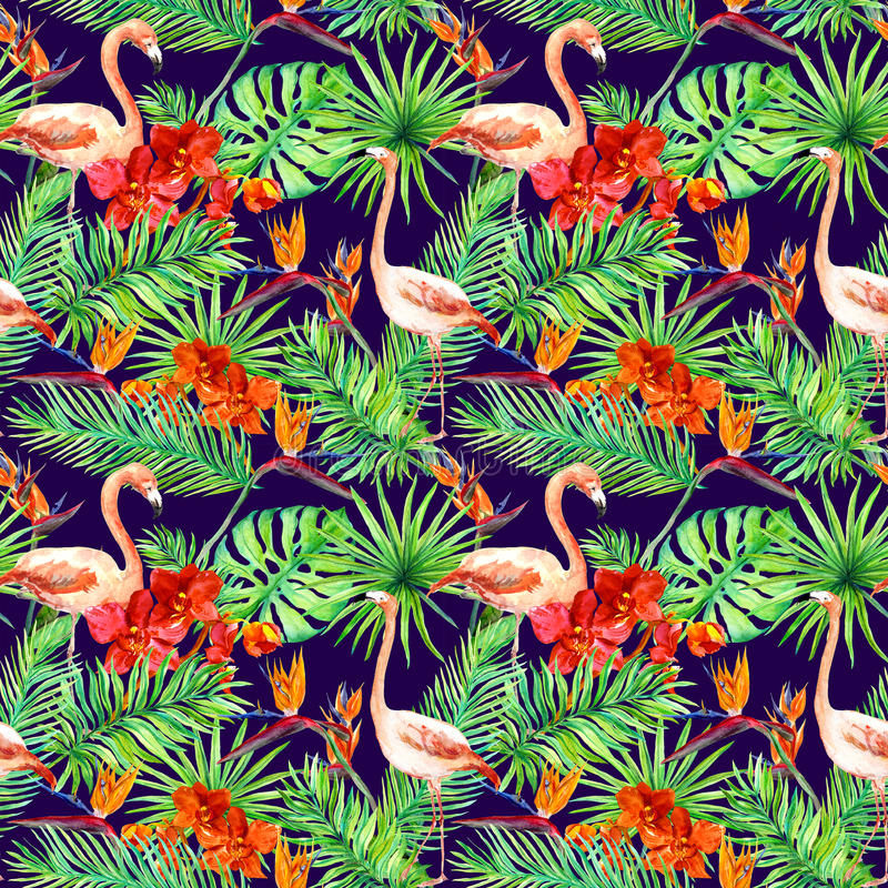 Diseño tropical: hojas exóticas, flamencos, flores de la orquídea Modelo inconsútil watercolor fotos de archivo