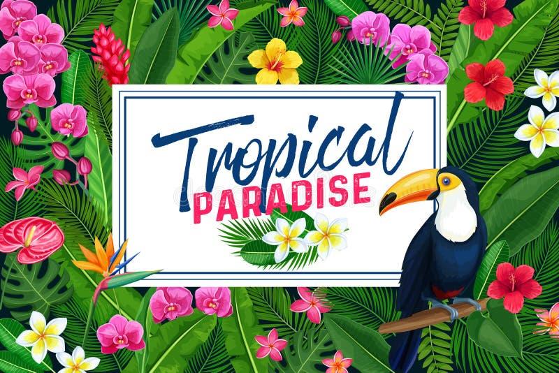 Diseño tropical o cartel de la página stock de ilustración