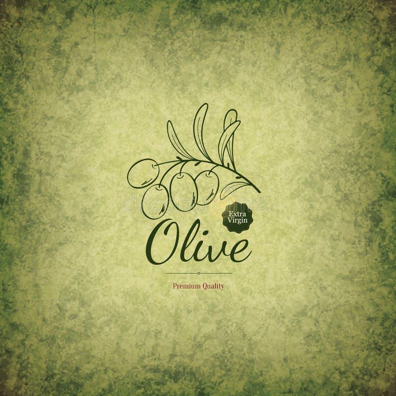 Diseño verde oliva de las etiquetas stock de ilustración