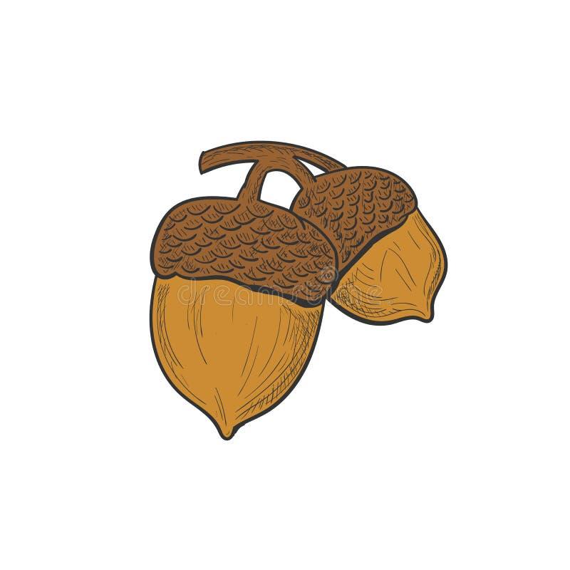Diseños exhaustos del logotipo de los robles de la mano libre illustration