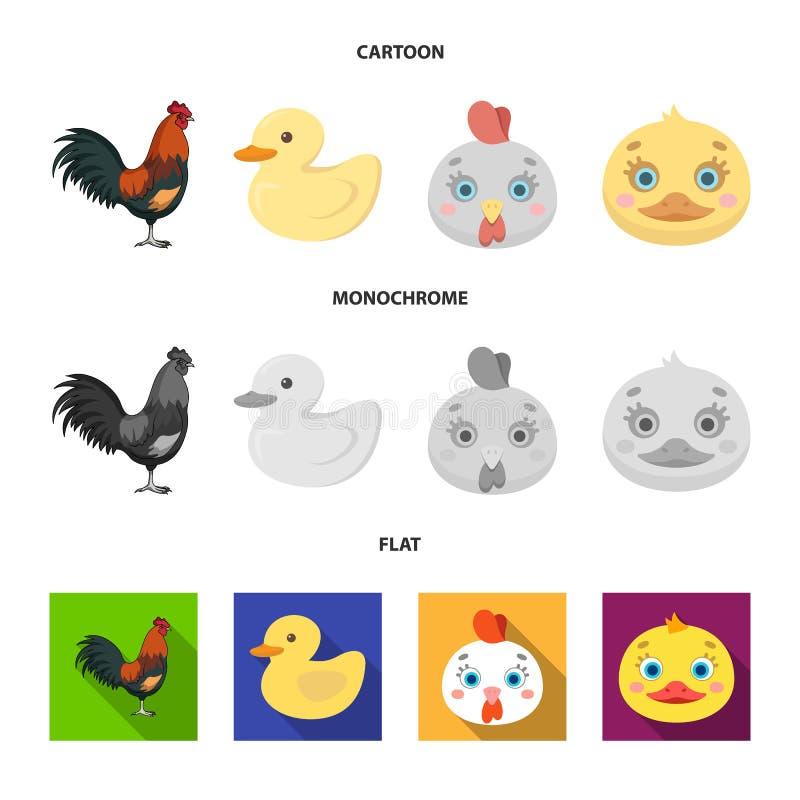 Dise?o del vector de icono divertido y de las aves de corral Fije del icono divertido y agr?cola del vector para la acci?n libre illustration