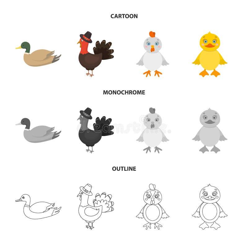 Dise?o del vector de muestra divertida y de las aves de corral Fije de divertido y del s?mbolo com?n de cultivo para la web stock de ilustración